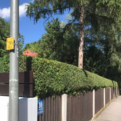 Gartenpflege Solln München von Baumpflege A. Hecher_1